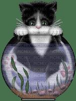 cat chat katze fish ball