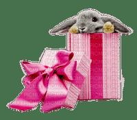 Ladybird - Rabbit in gift box