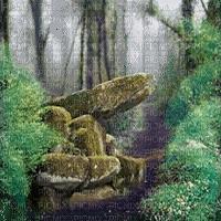 forest landscape foret paysage