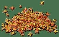 automne feuilles deco autumn leaves