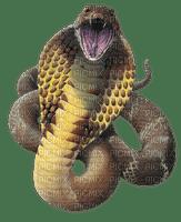 Kaz_Creations Snakes Snake