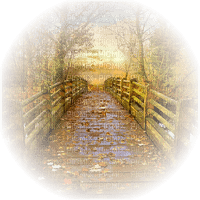 autumn bridge leaves automne paysage