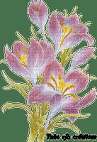 rfa créations - crocus rose