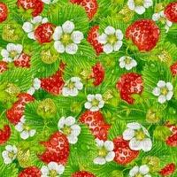 fond Strawberry,Pelageya, irena ,paysage,