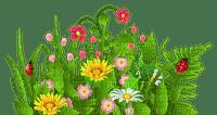 SPRING GRASS FLOWERS DECO printemps fleurs herbe