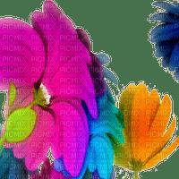 fleurs cadre