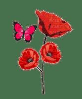 coquelicot-poppy-papillon
