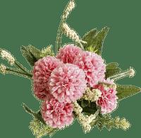 minou-pink-rosa-flower-blomma-fiori-fleur