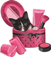 chat cat katze makeup