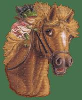 cheval Danna1