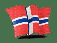 Norwegian flag. Leila