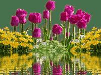 spring printemps frühling primavera весна wiosna tube deco flower fleur blossom bloom blüte fleurs blumen  garden jardin lit bed beet tulips water pond