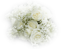 lily of the valley white rose muguet