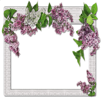 frame lilac  cadre fleur