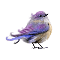 Kaz_Creations Bird Birds Purple