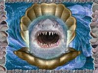 Shell-Shark