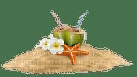 Cocos , estrella de mar y arena