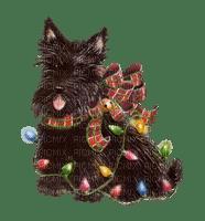 Christmas Animals