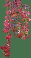 Plants.Fleur.Branche.Branch.Automne.Autumn.Deco.Victoriabea