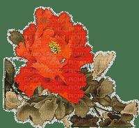 Plants.Fleurs.Flowers.Victoriabea