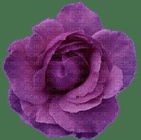 Fleur.Purple flower.Violet.Rose.Deco.Victoriabea