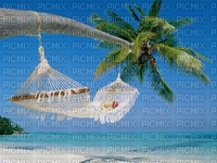 chantalmi paysage ile paradisiaque hamac