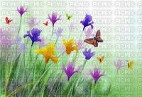 image encre paysage la nature fleurs papillon  effet bon anniversaire edited by me
