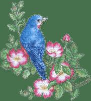 blue bird flower branch oiseaux bleu fleur branche