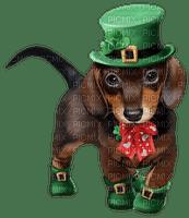 st patrick chien dog