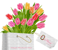 tulips 🌹🌷happy womens day 8 march