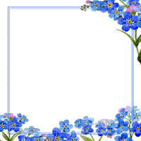 Marco flores azules