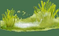 grass deco border herbe