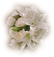 chantalmi fleur blanche lys rose