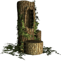 tree arbre baum tree stump  deco tube spring printemps garden jardin souche d'arbre souche darbre foret forest