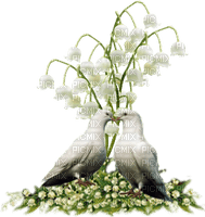 flowers lily of the valley bp