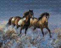 Paarden in galop in het water
