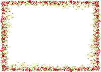 red flowers frame