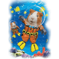 Guinea pig animal fun diver underwater sea mer meer deco tube summer ete fantasy