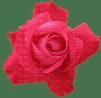 Kaz_Creations Deco Flowers Roses Flower Rose