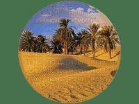 desert landscape bp