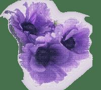 minou52-fiori viola-lilla-blommor