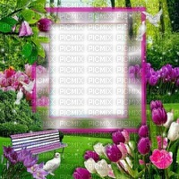 Fond printemps nature tulipes oiseau banc Debutante nature bg flower bg bird tulip bg spring