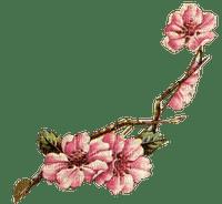Vintage Spring Branch
