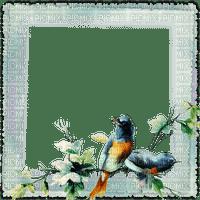 cadre oiseaux  deco frame birds
