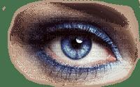 oeil/eye