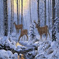 deer in winter forest cerf hiver forêt