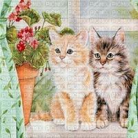 Katzen, chats, cats
