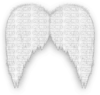 ailes d'ange sophiejustemoi