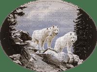 wolves - Nitsa -3