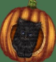 Kaz_Creations Halloween Deco  Cat Kitten Pumpkin